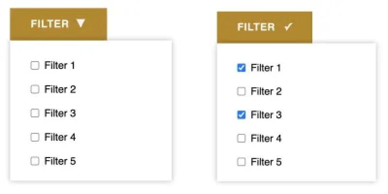 Lorsqu'une ou plusieurs cases à cocher dans la liste déroulante des filtres sont cochées, le bouton modifie l'icône pour indiquer l'état du filtre actif dans le groupe.
