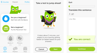 Duolingo has a user-guided tour that consists of a quick test.