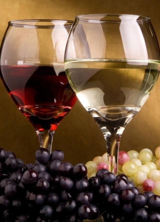 términos-de-uso-más-recuente-vino-El-Portal-del-Chacinado