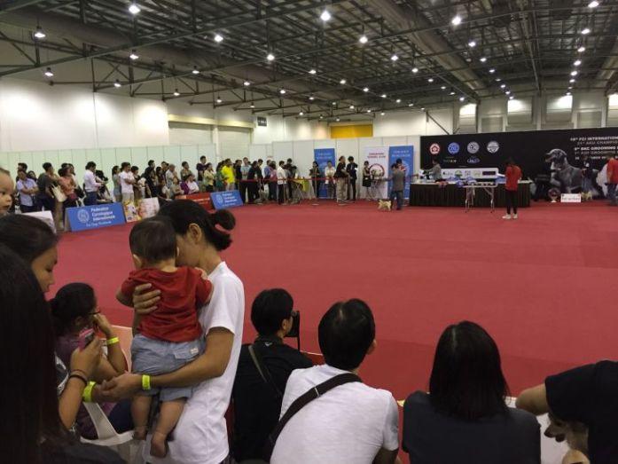 singapore-pet-expo-2015-246