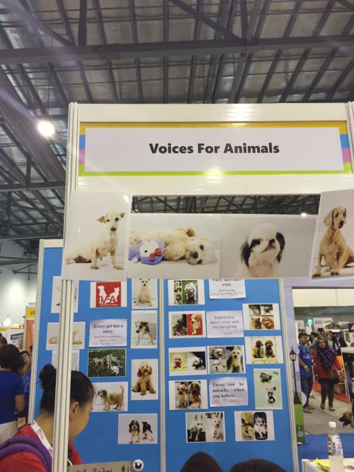 singapore-pet-expo-2015-421