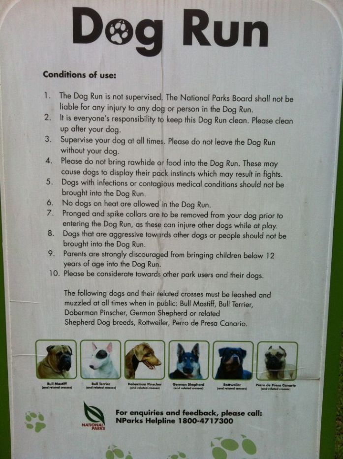dog run singapore rules