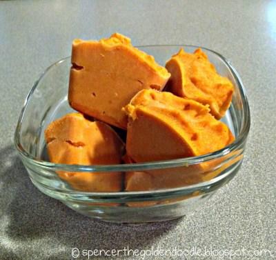 frozen pumpkin treat