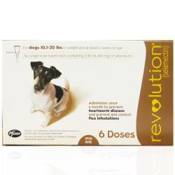 Revolution For Dogs