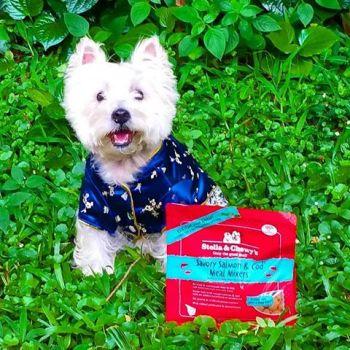 Westie freeze dried dog food