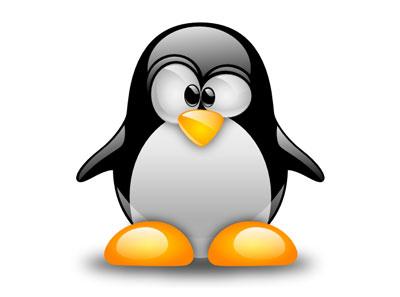 Provant el Linux Mint 12