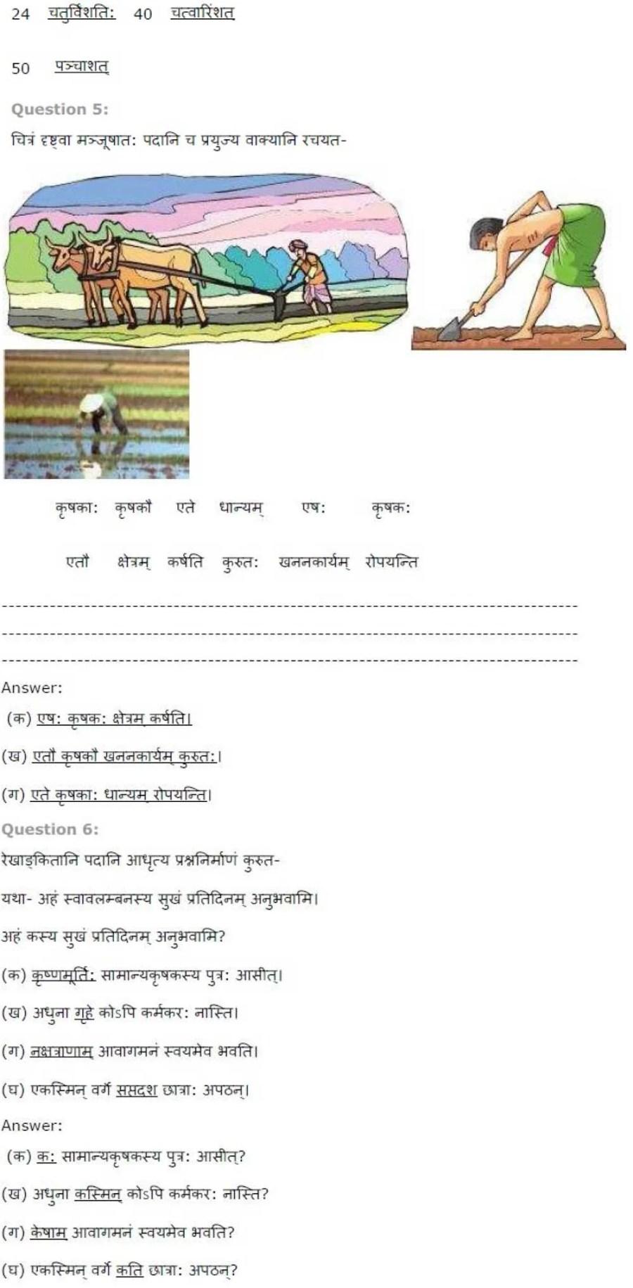 ncert solutions for class 7 sanskrit chapter 3 swawalambanam 3