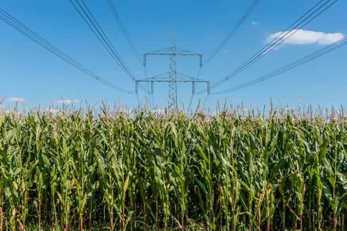 Energia elétrica com uso de bioprodutos
