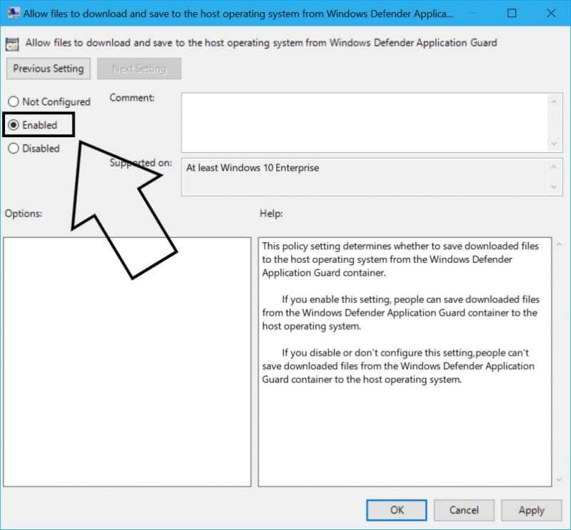 Enable Files Download in WDAG UI