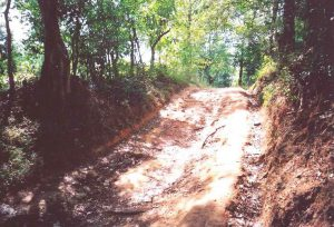 What will it cost ? | Rural Roads