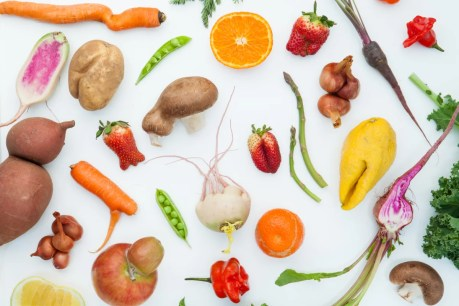 Fighting Food Waste Just Got Easier, Thanks to Imperfect Produce | Portland Monthly