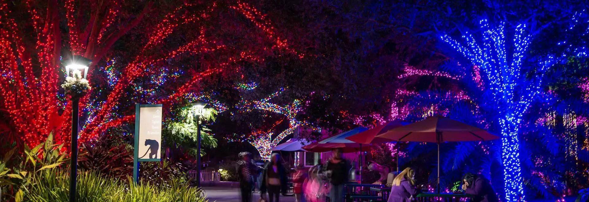Zoo Lights Houston Texas