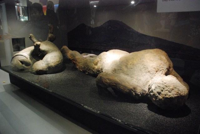 Le boutte creepy où ils nous montrent un gars et un chien morts à Pompeii en tenant de se protéger de la lave et se tordant de douleur.