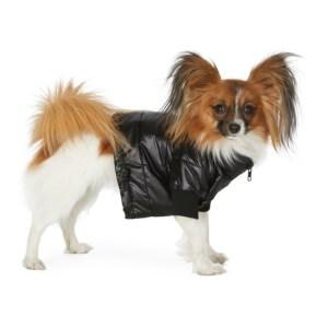 VIP SSENSE Exclusive Black Puffer Jacket