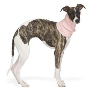 giu giu Pink Nonna Animal Collar