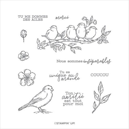 SET DE TAMPONS AMOVIBLES LIBRE COMME UN OISEAU (FRANÇAIS) stampin up scrapbooking carterie mini album ...