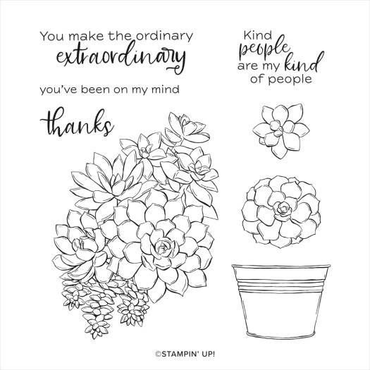 SIMPLY SUCCULENTS CLING STAMP SET