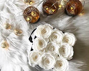 Weiße Rosen zu Weihnachten verschenken