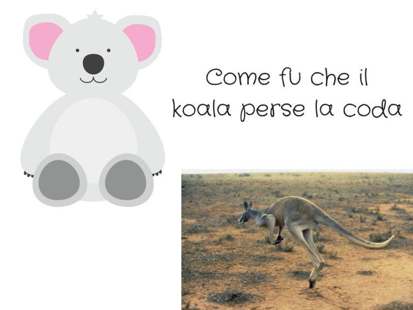 Come_fu_che_il_koala_perse_la_coda