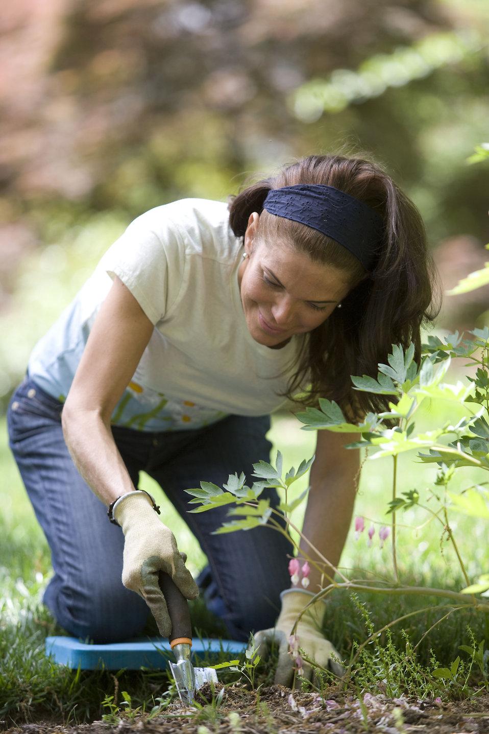 Gardening Free Stock Photo A Woman Enjoying Gardening