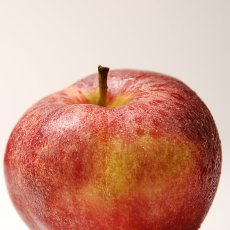 Review – Apple