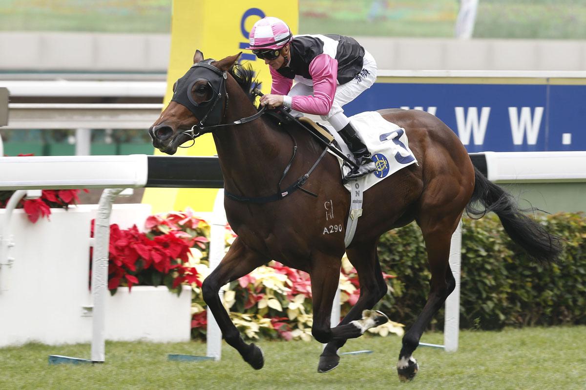 「美麗寶貝」輕取新馬錦標 – 賽馬新聞 – 香港賽馬會
