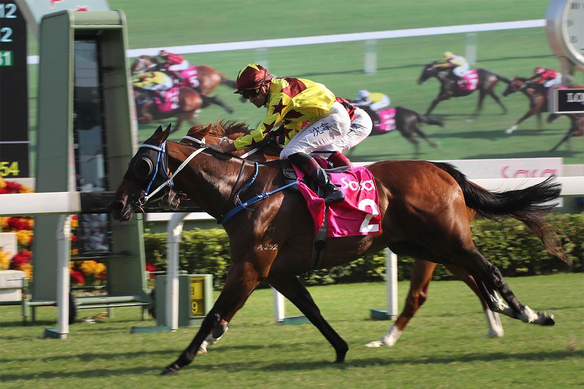 莎莎婦女銀袋圖輯 – 賽馬新聞 – 香港賽馬會