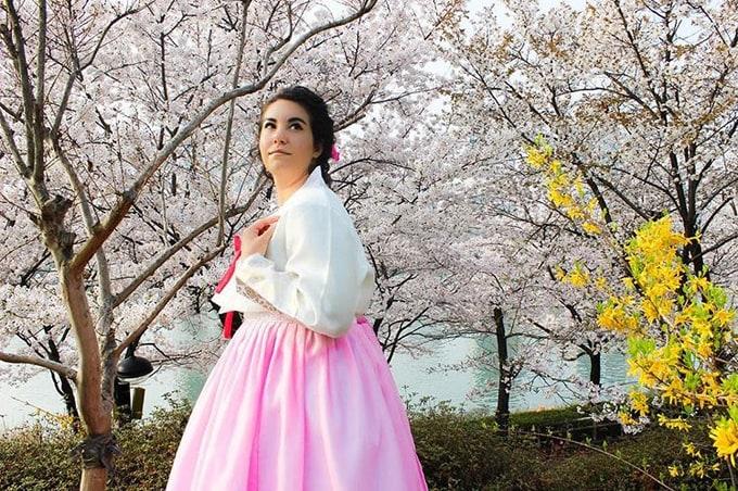 hồ seokcheon là một địa điểm ngắm hoa anh đào ở hàn quốc
