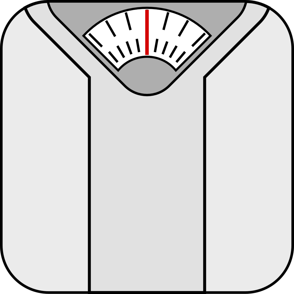 Image result for bathroom scales images public domain