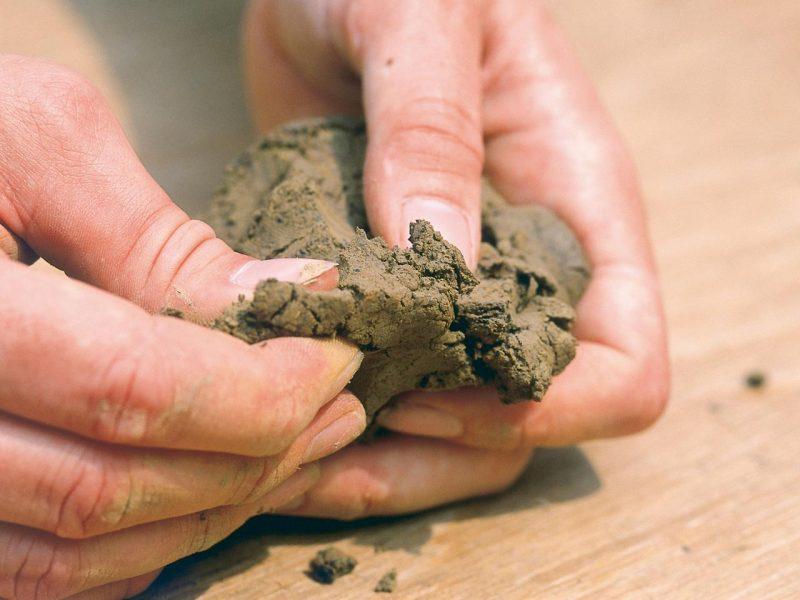 proses terjadinya pemebentukan tanah liat menjadi tanah iat yang sempurna