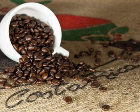Costa Rica Tarrazu La Pastora Coffee