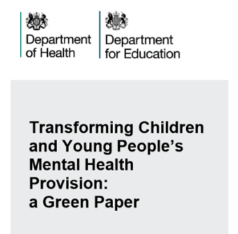 Green paper on mental health provision