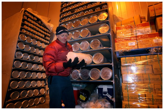Ice cores in cold storage