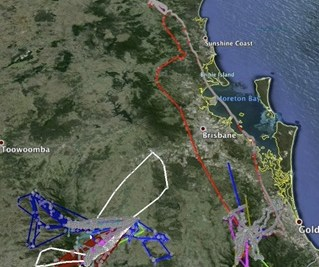 Captured trajectories from many bats in the south east QLD area.