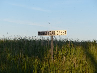 Monkeygar Creek. Image credit: Heather McGinness