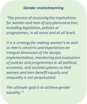 Gender mainstreaming quote