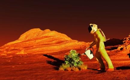 Astronaut figure in red landscape