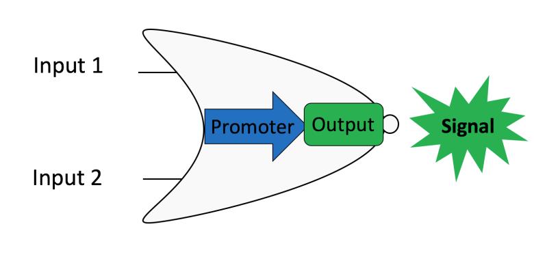 Logic gate graphic