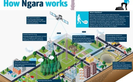 This infographic explains how Ngara Works.