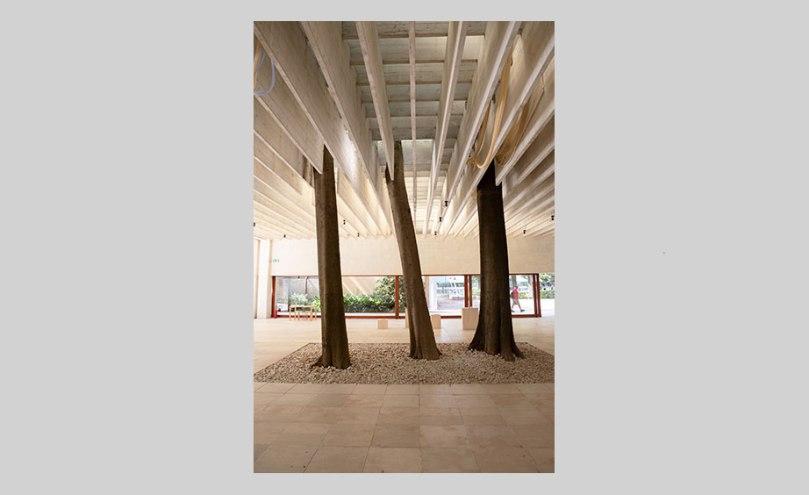 European nettle trees that form part of the Nordic Pavilion in Venice Photo: Finnish National Gallery / Pirje Mykkänen