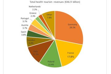 Figure 3: Shares of health-tourism revenues (domestic plus international)