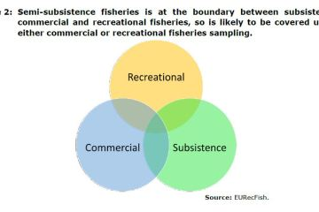 Figure 2: Semi-subsistence fisheries is at the boundary between subsistence, commercial and recreational fisheries, so is likely to be covered under either commercial or recreational fisheries sampling.