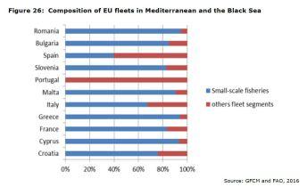 Figure 26: Composition of EU fleets in Mediterranean and the Black Sea
