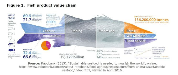 Figure 1. Fish product value chain