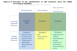 Figure 2.1: Overview of the classification of CAP measures since the 1960s according to flexibility