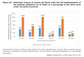Figure 16. Estimated revenue of various UK fleets under the full implementation of the landings obligation (as of 2019) as a percentage of the 2013 value under two policy scenarios.