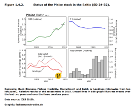 FIGURE 1.4.2: Status of the Plaice stock in the Baltic Sea (SD 24-32)
