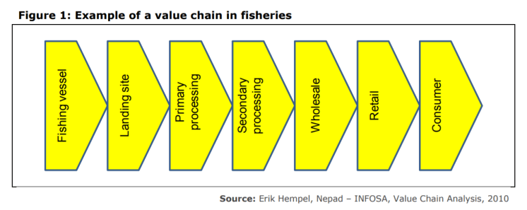 Figure 1: Example of a value chain in fisheries
