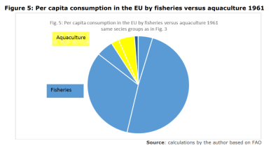 Figure 5: Per capita consumption in the EU by fisheries versus aquaculture 1961