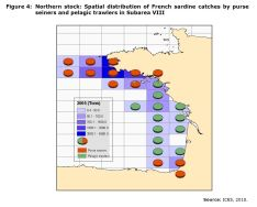 Figure 4: Northern stock: Spatial distribution of French sardine catches by purse seiners and pelagic trawlers in Subarea VIII